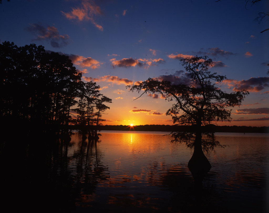 Reelfoot Sunset-Tennessee